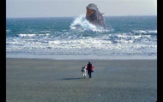 Godzilla Interventus